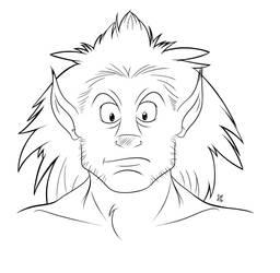 The Liondude