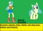 Solar Flare-Melody Drumline Full Bio