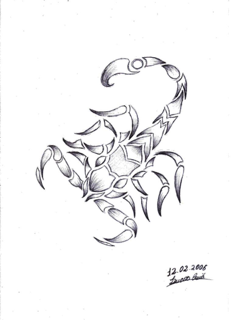 Line Drawing Tattoo Artists : Tattoo scorpion drawing