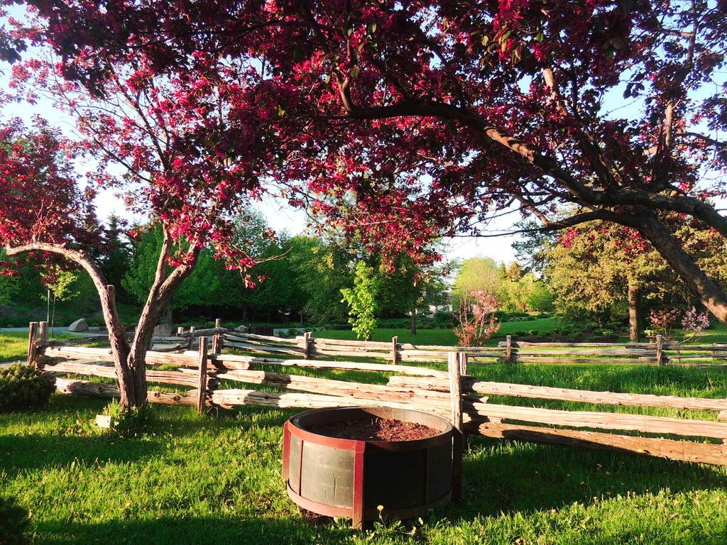 Dans le parc by NorthAngel