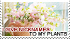 :: Stamp | I give nicknames to my plants by mleko099