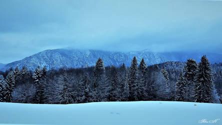 Winter Magic by sesam-is-open
