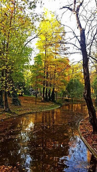Our Beautiful And Empty Autumn