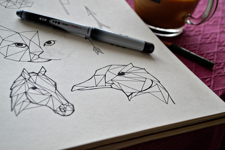 Geometric Animal Drawings By Pumora On Deviantart