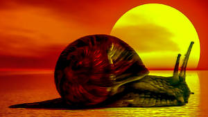 Set The Snail To The Sun by DonkehSalad23