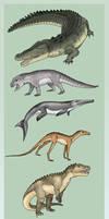 Diversity of the Crurotarsi