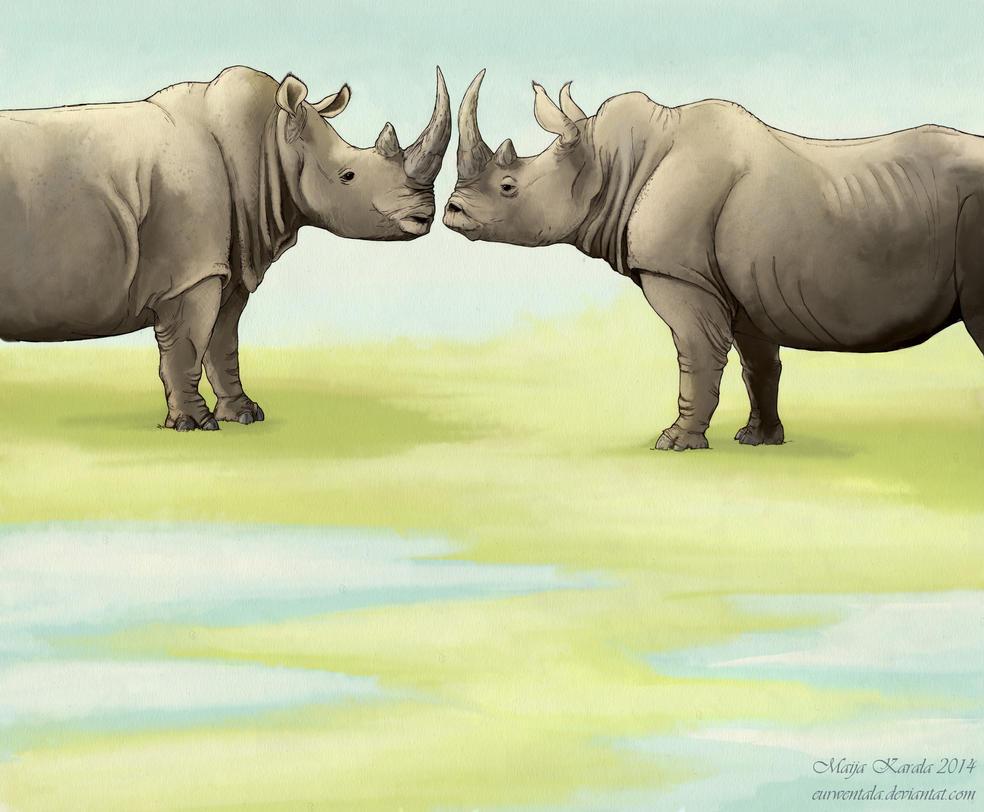The Sixth Rhino by Eurwentala