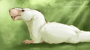 The White Gorgon
