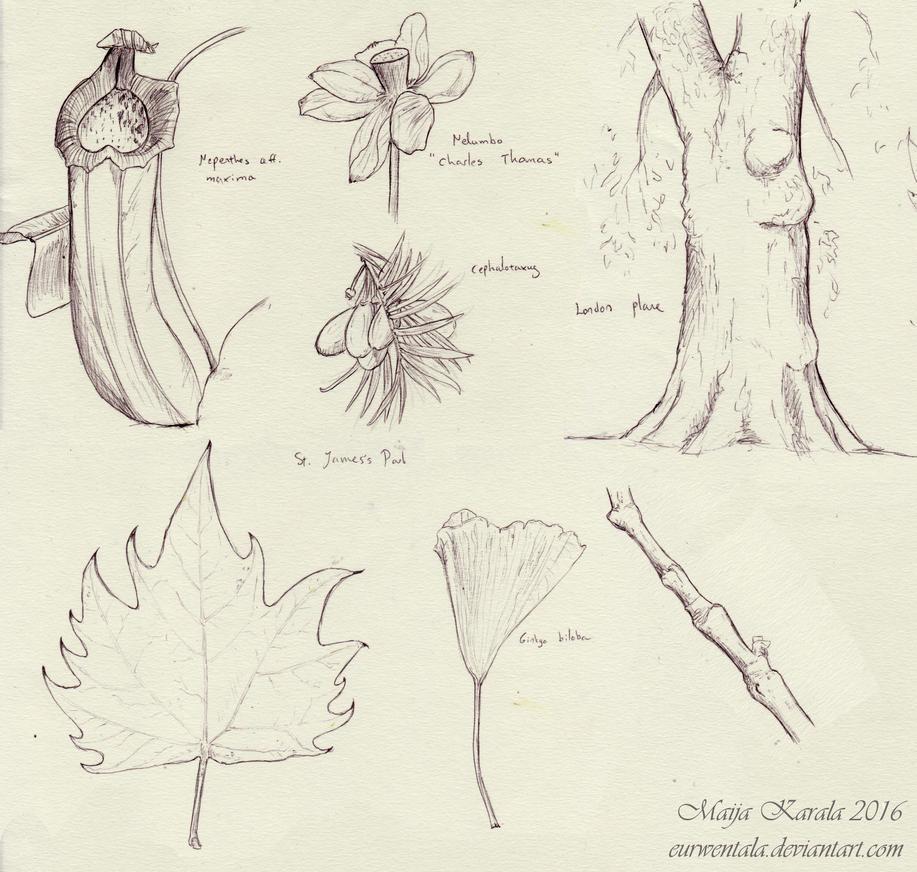 London Sketching 2 by Eurwentala