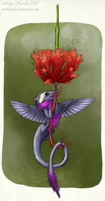 Colibri Dragon