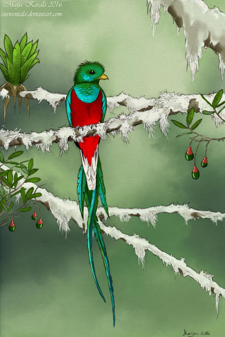Resplendent Quetzal by Eurwentala