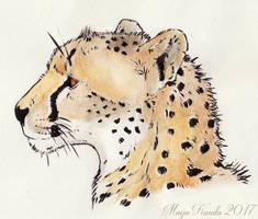 Portrait of a Cheetah by Eurwentala