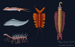 Cambrian Oddballs by Eurwentala