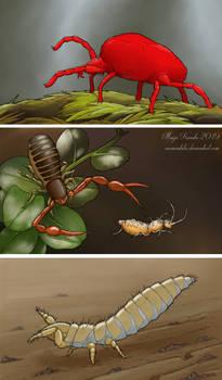 Secrets in the soil, part 2
