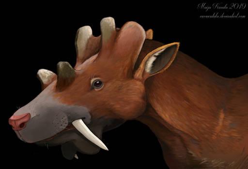 Uintatherium portrait