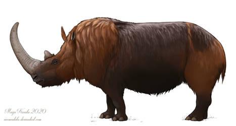 Woolly Rhino