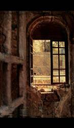 Leading windows by Campanile