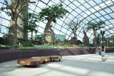 Marina Bay Gardens by tilldawn
