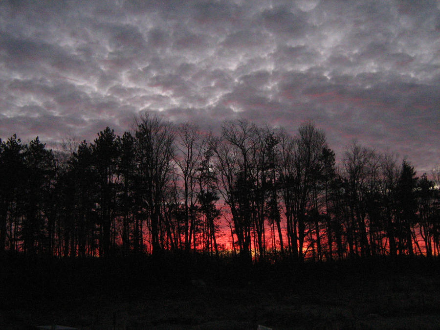 red skies at morning by incenderepicta