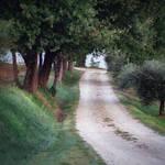 Tuscany road - stock