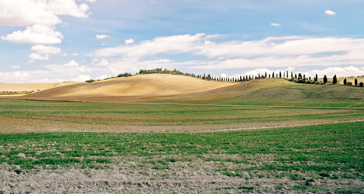 Day Tuscany Group Tours