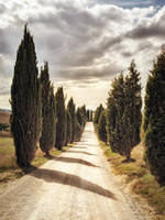 background - tuscany alley by 8moments