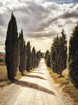 background - tuscany alley