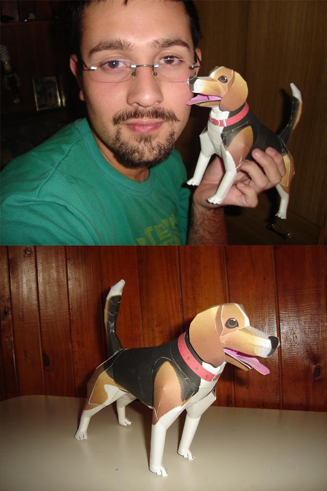 Beagle Dog Papercraft by ryo007