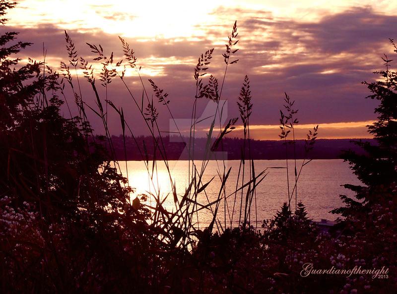 Sundown Silhouette by Guardianofthenight