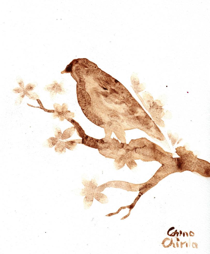Little bird by CORinAZONe