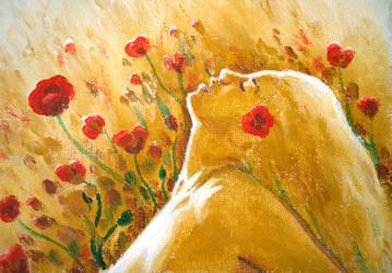 Summer dream with poppy flowers by CORinAZONe