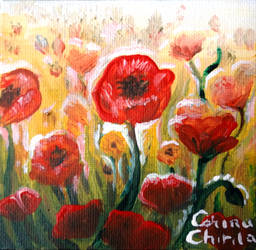 Papaver rhoeas poppy field floral painting by CORinAZONe