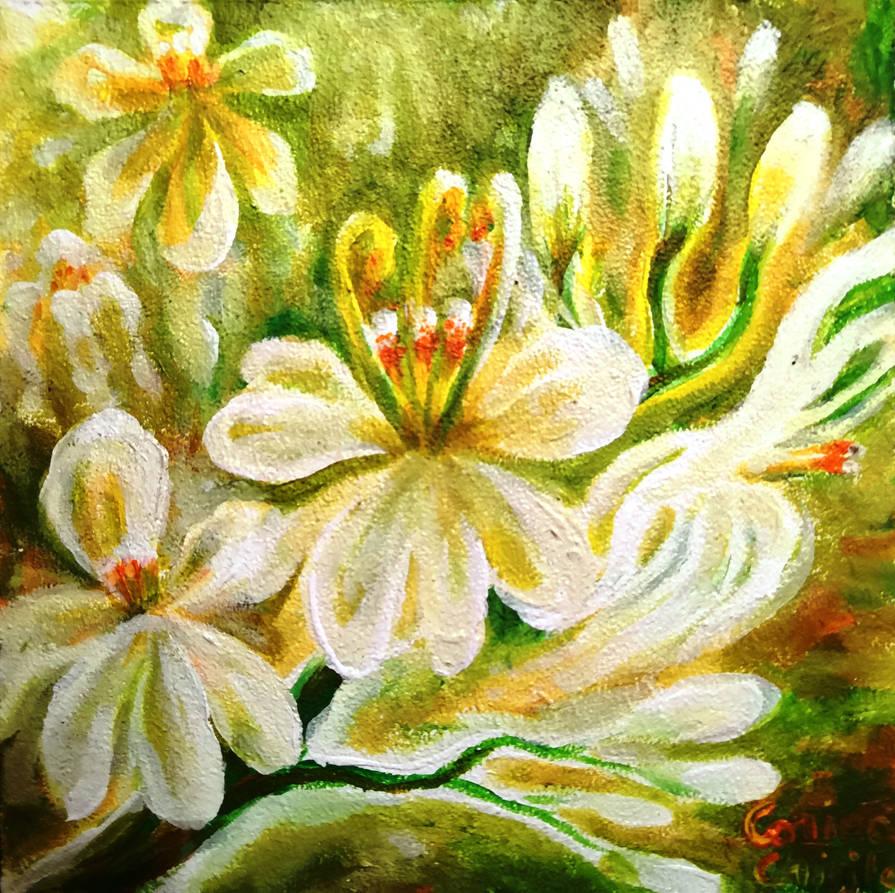 Moringa flowers by CORinAZONe