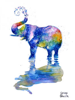 Colorful Elephant