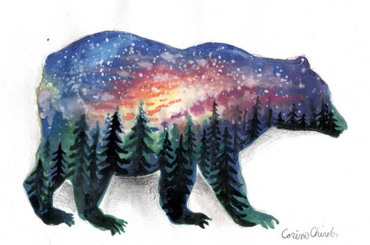 The bear without a forest