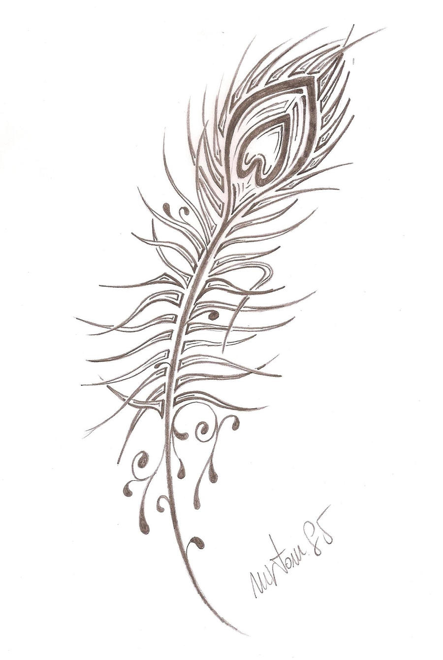 peacock feather by mrtom85 on deviantart