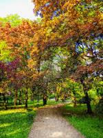 Autumn 20