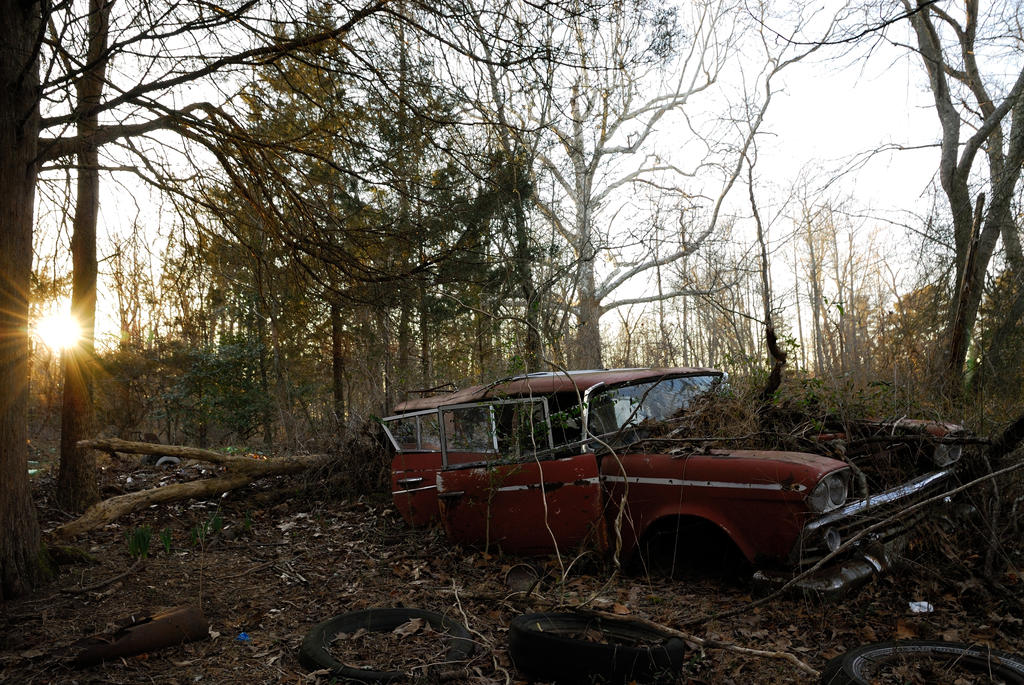 how to buy an abandoned car