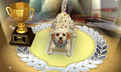 Master Cup Obedience Trial win! by AnnaTheWonderGirl01