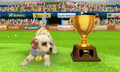 Nintendogs Cup Lure Coursing win! by AnnaTheWonderGirl01