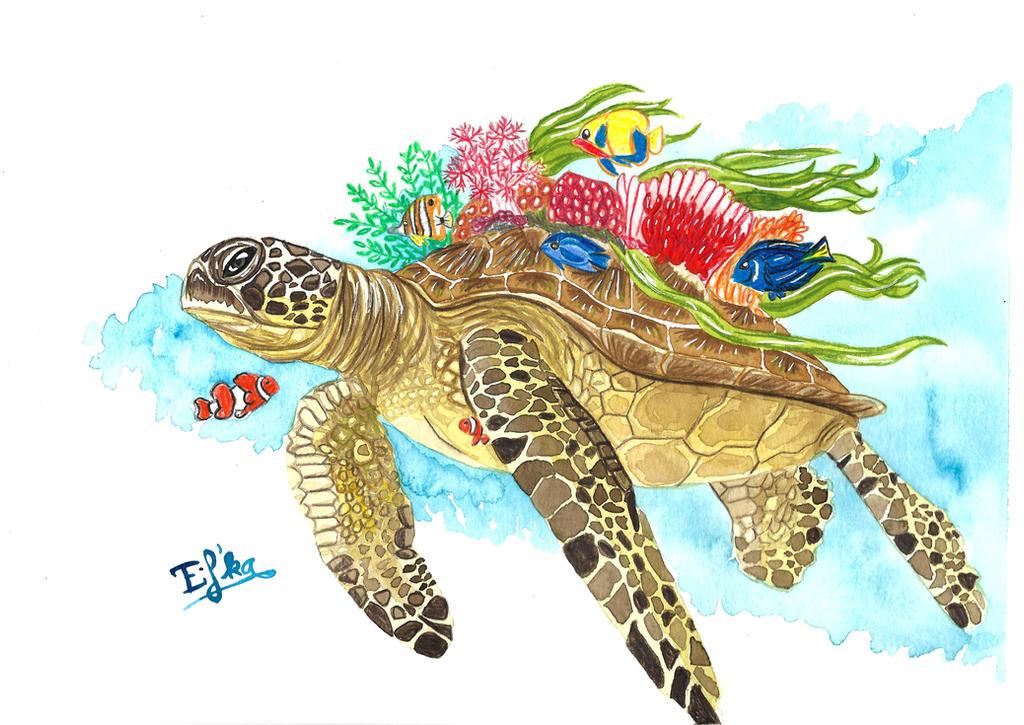 Watercolor Turtle By Eif Ka On Deviantart