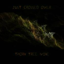 Thorn Tree Vine