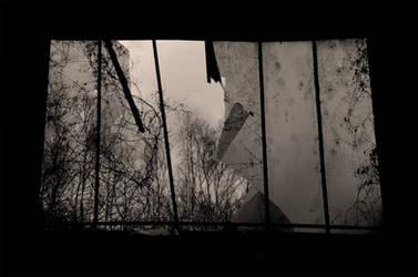 Black hell, gray heaven by Dystopia-Maxima