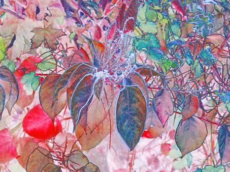 Autumn in an elvish garden