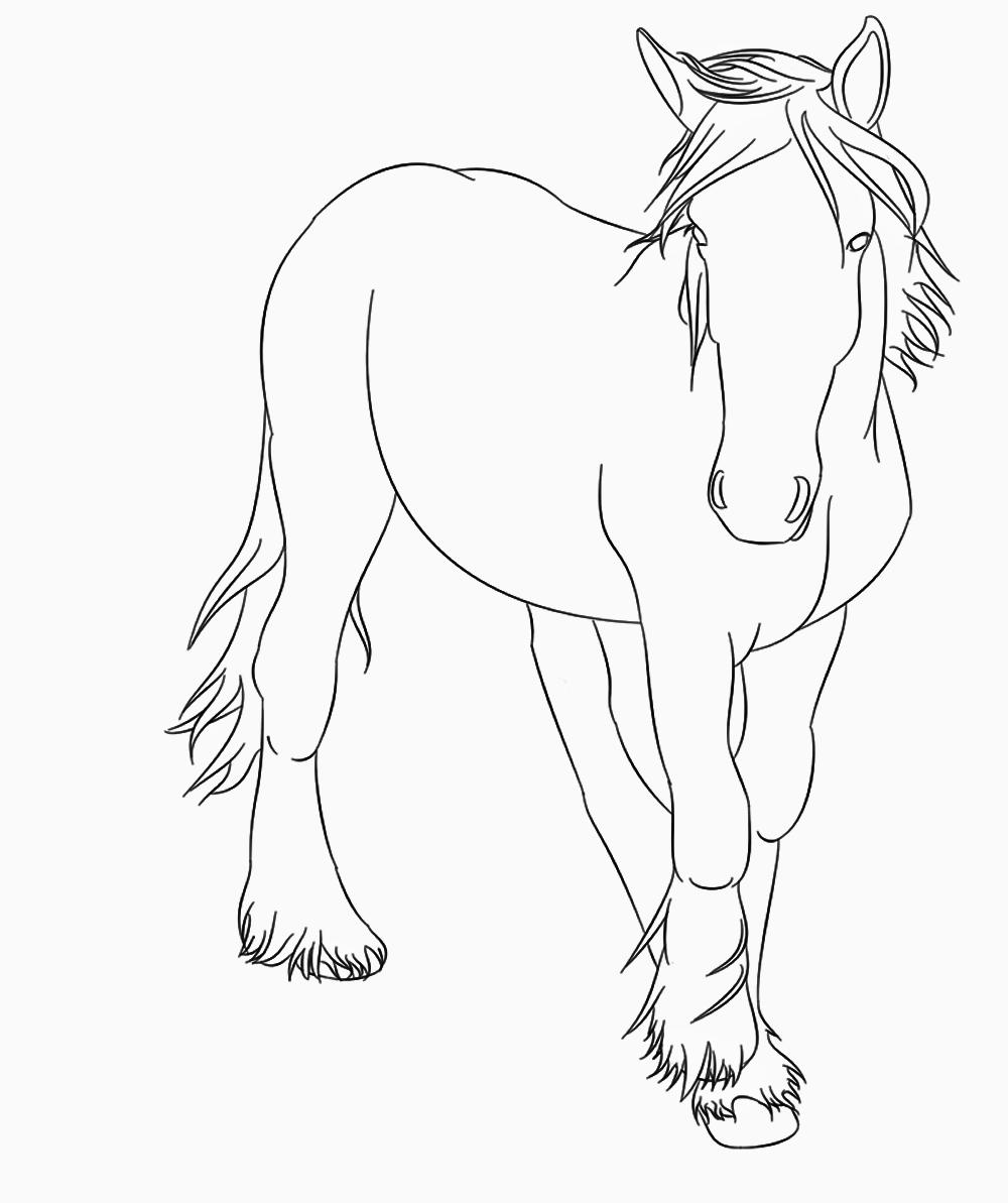 Ausmalbilder Pferde Tinker Die Beste Idee Zum Ausmalen Von Seiten