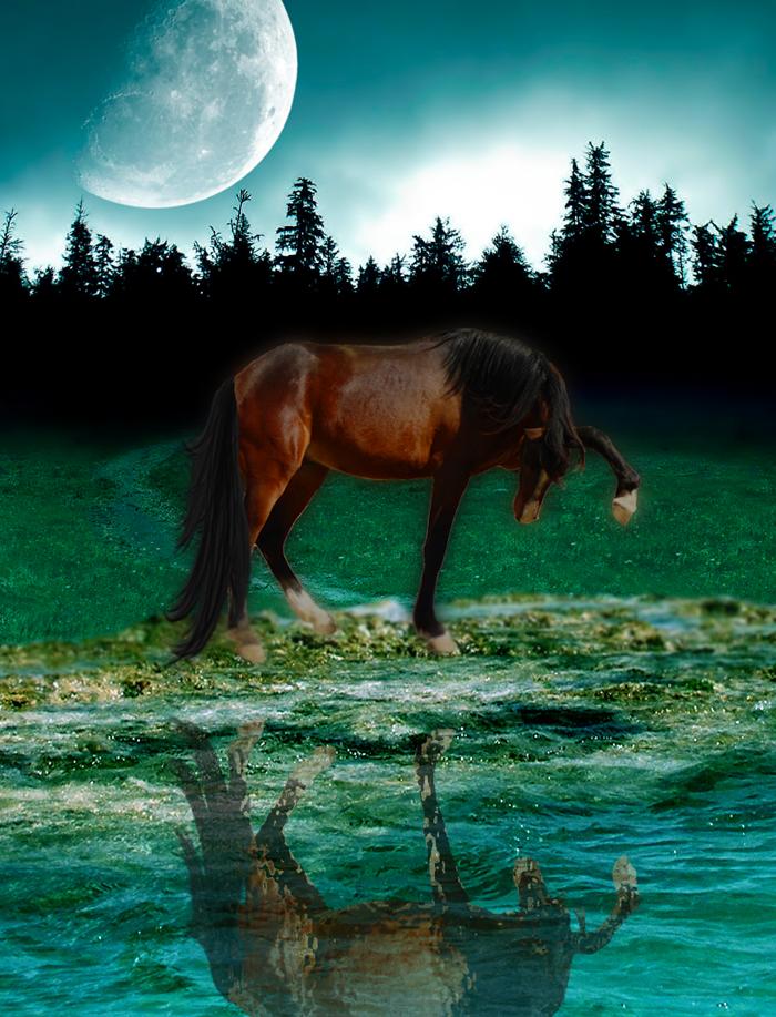 ^ Twilightstars ^ horses First_Manip_by_MoonyArsaraidh