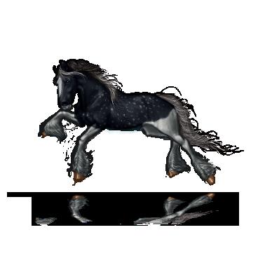 MoonyArsaraidh's Profile Picture