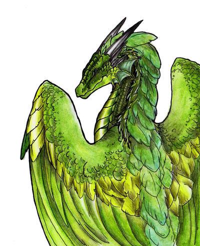 World of War and Peace PUNKAGGEDON - Página 10 Green_Feathers_by_Aryiu91_by_GreenDragonClub