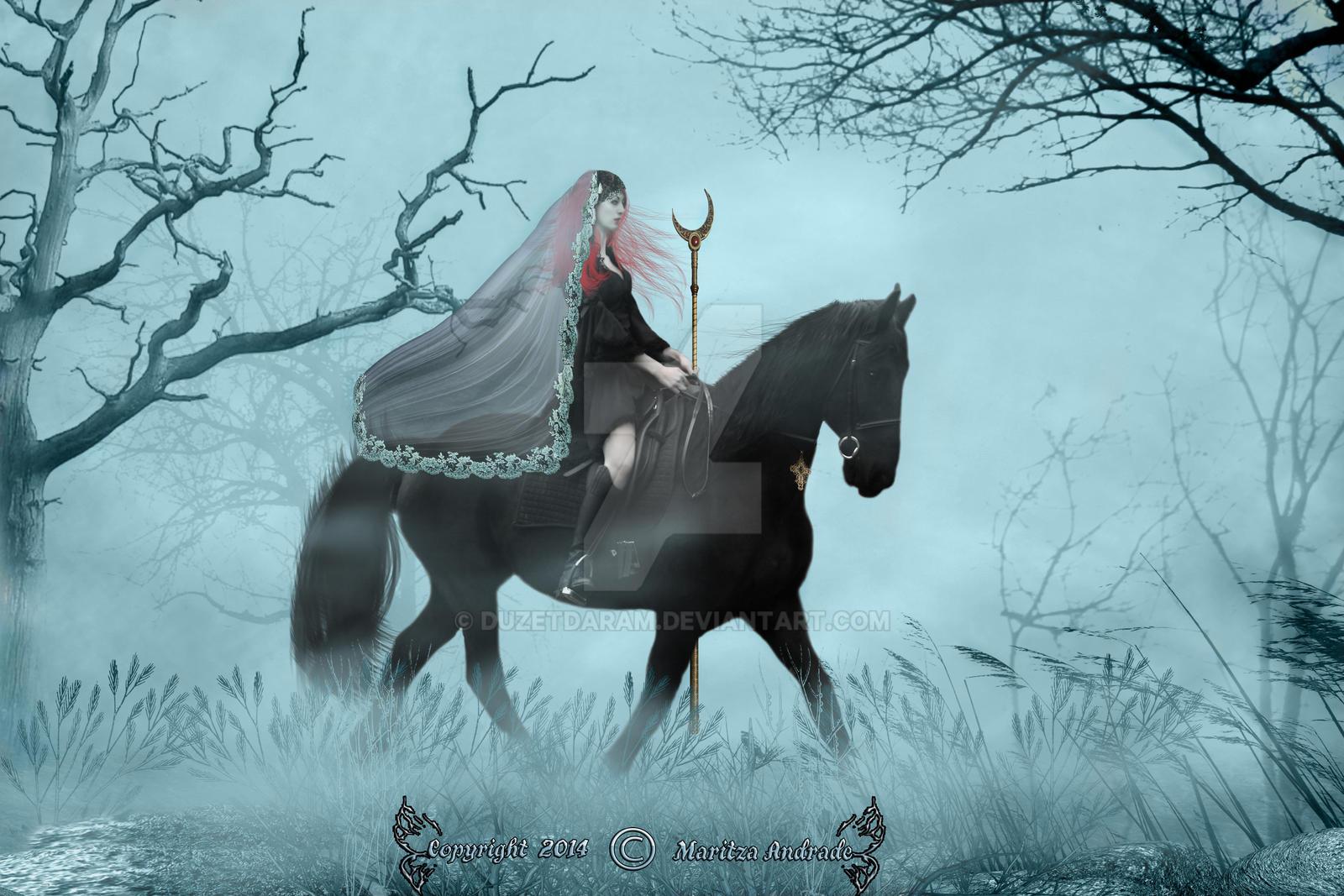 Dark Rider by duzetdaram