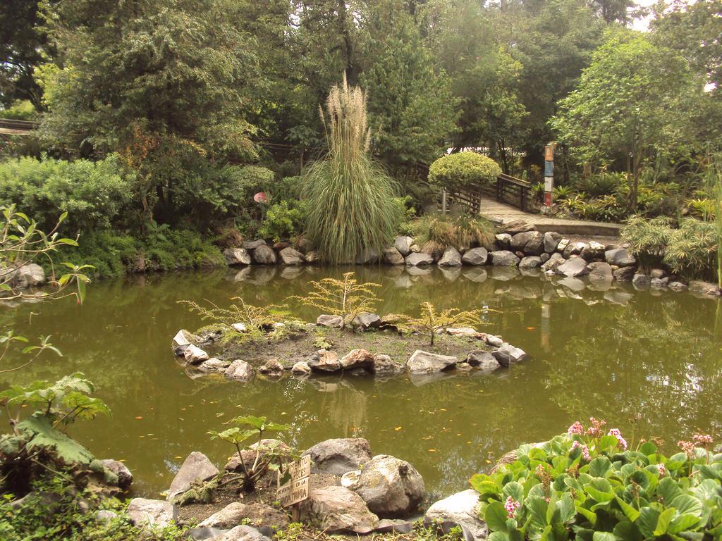 Jardin botanico quito ecuador by duzetdaram on deviantart for Jardines verticales quito ecuador